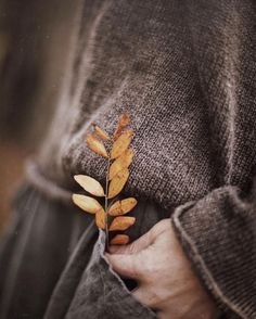 Autumn is finally here and I can't wait! Autumn Inspiration for Katharine Dever Autumn Day, Autumn Leaves, Winter, Soft Autumn, Lifestyle Fotografie, Foto Blog, Autumn Aesthetic, Aesthetic Art, Aesthetic Anime