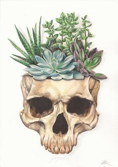 From Death Grows Life. Artwork by Jade Jones – WickedSeraphim From Death Grows Life. Artwork by Jade Jones From Death Grows Life. Artwork by Jade Jones Jade Jones, Art Sketches, Art Drawings, Drawings Of Plants, Horse Drawings, Succulent Tattoo, Nature Drawing, Drawing Hand, Pencil Drawings Of Nature