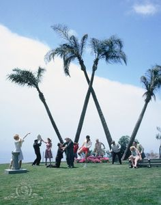 Four Palm Trees as 'The Big W in the Sky'   Mad Mad Mad Mad World 1963