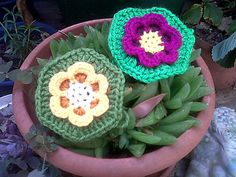Ravelry: Lily-Pad Hexagon pattern by In the Loop Designs