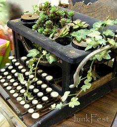 planted typewriter