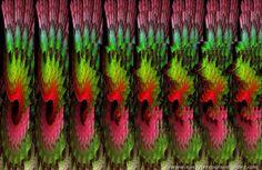 estereogramas 3d | ... de Información - Imágenes ocultas. Estereogramas! 3D Editado