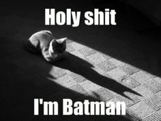 I'm Batman xDDDDD