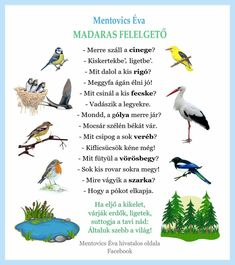 Kids And Parenting, Verses, Nursery, Songs, Bird, Education, Children, School, Crafts