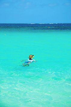 Go Snorkeling ~ Ani Villas Anguilla