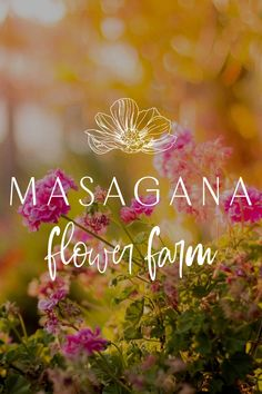 After crafting a colourful brand, we began to design a Squarespace website that highlights Masagana Flower Farm's products, services, workshops, and experiences in a bright, happy website. Communicating the brand's values of cultivating beauty, empowerment, and creativity, the bright and fun text placed throughout is very much on-brand. We've also designed it so the text complements the main event - the flowers! We've also left a lot of whitespace so that every image pops! Unique Business Names, Creative Business, Brand Identity Design, Brand Design, Layout Inspiration, Logo Design Inspiration, Happy Website, Website Design Layout, Flower Farm
