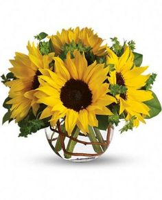 Sunny Sunflowers T152-2A Brighten up a table, send get well wishes, or simply sprinkle sunshine on someone's day with this summer flower arrangement. Bold sunflowers are arranged in a glass bubble bowl with curly willow curled inside.   Sunflowers steal the show in this simple arrangement.  by 4165flower.com