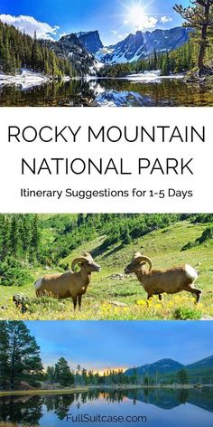 How to see the best of Rocky Mountain National Park. Itinerary suggestions from one to five days. : How to see the best of Rocky Mountain National Park. Itinerary suggestions from one to five days. Colorado Springs, Denver Colorado, Road Trip To Colorado, Colorado National Parks, American National Parks, Us National Parks, Rocky Mountain National Park, Mountain Park, Pikes Peak
