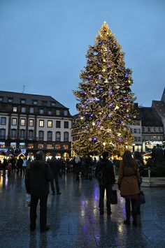 Place Kleber, Strasbourg, Alsace, France www.travelandtransitions.com/european-travel/european-travel-top-european-river-cruise-ideas-christmas-2014/