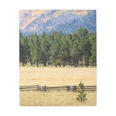 Flagstaff Arizona colorful field Metal Print  $121.54  by BryanKeilPhotography  - custom gift idea