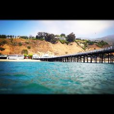 View from Malibu Pier... it never gets old.
