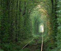 Tunnel of Love in Klevan, Ukraine