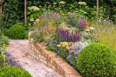 See Squire's Garden Centres: Urban Oasis at RHS Hampton Court Palace Flower Show / RHS Gardening