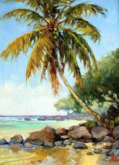 Anini Palm tree on a hot summer day.