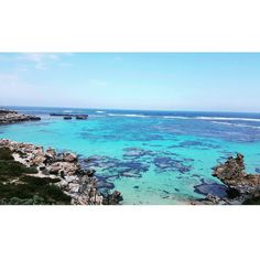 #rottnestisland #rottnest #riding #pretty #awsome #snorkelingspot #snorkeling #emerald #travel#perth #onmyown  태어나서 이런 색깔의바다는 첨본다 자전거타고 질주한덕분에  내허벅지는불탈것같지만 고생한보람이있는듯 When i first time see the emerald color beach really awsome and incredible.. by soo_jini http://ift.tt/1L5GqLp