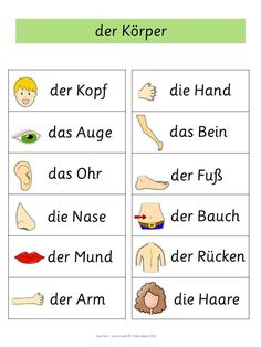 German Word Walls – Basic Vocabulary Body Parts Cards Study German, German English, Learn German, Learn French, German Grammar, German Words, German Resources, Deutsch Language, Germany Language