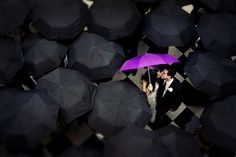 Real Wedding: Elissa   Jeff in New Jersey, super cute, love the black, and then the purple umbrella!