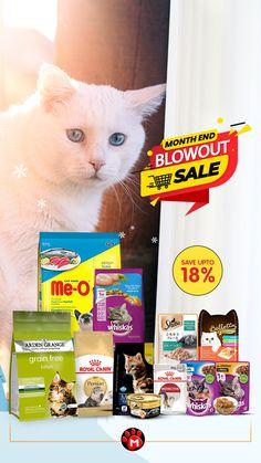 Month End, Best Cat Food, Pet Pet, Sale On, Cool Cats, Kittens, Range, Pets, Shop
