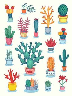 made by jessica h lee dibujos dessin cactus, Cactus Drawing, Cactus Art, Cactus Painting, Cactus Decor, Kaktus Illustration, Illustration Art, Cacti And Succulents, Cactus Plants, Indoor Cactus