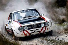 rally Alfa //