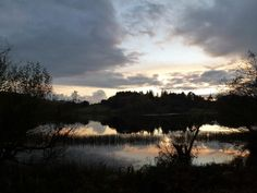 Llandecwyn lake
