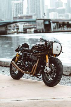 749 best triumph moto images triumph motorcycles triumph bikes rh pinterest com