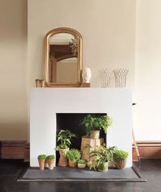 inspiring ideas for non working fireplaces, plants