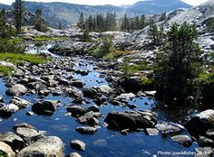 San Joaquin headwaters Sign up at the Library and generating funding, just sign up, share and automatic, $5 will be shared to the American Rivers. read more...