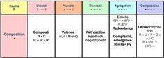 Méthode Toposcopie : Dimension Composition