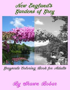 This Is My FIRST Greyscale Coloring Book Available On Etsy New Englands
