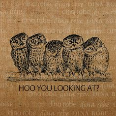 (artist unknown) Idea for mosaic title with owls Harry Potter Pets, Owl Tat, Owl Cartoon, Owl Always Love You, Owl Crafts, Cartoon Sketches, Burlap Pillows, Wise Owl, Owl Bird