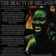 The Magic of Melanin (Advanced African Science from r/kangz) My Black Is Beautiful, Black Love, Black Art, Afro, Pseudo Science, Brave, By Any Means Necessary, Black History Facts, Strange History
