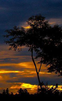 Por do sol na Fazenda do Lobo - Sunset in the Wolf's Farm - Brazil