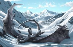 Black and White by Khyaber on DeviantArt - making snow angels