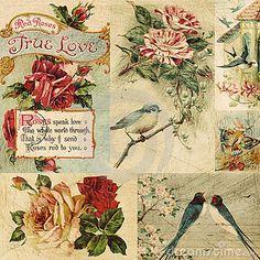 Resultados de la Búsqueda de imágenes de Google de http://www.dreamstime.com/vintage-bird-and-flowers-collage-background-thumb16287550.jpg