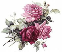 Best Chic Cabbage Roses Shabby Waterslide Decals Furniture Size | eBay