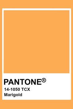 Colour Pallete, Colour Schemes, Color Trends, Color Combinations, Pantone Color Chart, Pantone Colour Palettes, Pantone Colours, Pantone Swatches, Color Swatches