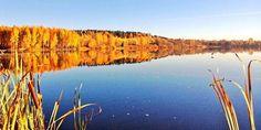 Syysaurinkoa Iidesjärvellä, Tampere Helsinki, The Neighbourhood, Autumn, Mountains, Photo And Video, Country, World, City, Travel