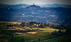 Comune di Vinci; Toscana, 21-06-2015