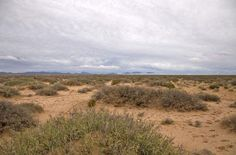 Nice Acreage For Sale in Texas, great road access, 20 acres land for $4,999