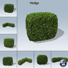 Hedge_product.jpg (1024×1024)