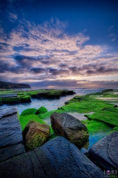 Turimetta Beach, Narrabeen NSW Australia