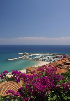 Flowers and sea - Menton, France
