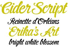 scripting FONTS   This month's Rising Stars