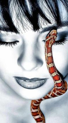 Color Splash, Color Pop, Spiders And Snakes, Corn Snake, Snake Art, Photography Pics, Product Photography, Eye Art, Black And White Photography