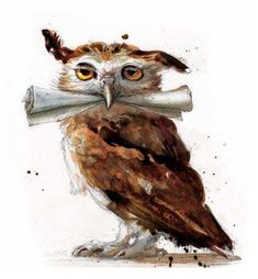 owls of harry potter - Google Search