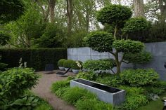 All green and zinc... Laurent-Perrier Garden by Tom Stuart-Smith, Chelsea Flower and Garden Show