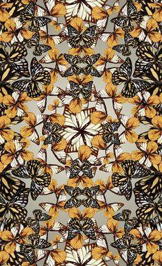 Spring Butterflies by natalia gemma, via Behance