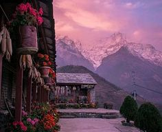 #Ghorepani_PoonHill_Trekking :This place is always enticing .. Gurung cottage , Ghandruk a wonderful shot including Annapurna range & wonderful Mt. Dhaulagiri from poon Hill   during Ghorepani trekking . #Ghorepani_Poonhill #nepal #himalaya #himalayas #mountain #mountains #mountainscape #landscape #landscape_lovers #landscapecaptures #diewocheaufinstagram #night #nightshot #hot_shotz #hiking : : @Clear_Sky_Treks......