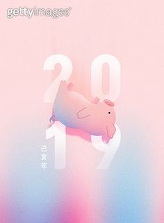 신년, 돼지, 연하장, 배너, 2019 New Year Illustration, Splash Screen, Event Banner, New Years Poster, Cute Piggies, Promotional Design, Web Design, Graphic Design, New Year Card
